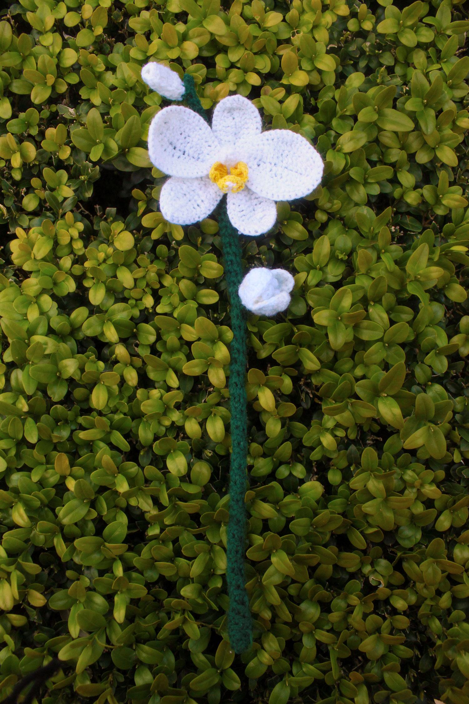 Ohh So Pretty Crochet Orchid Flower