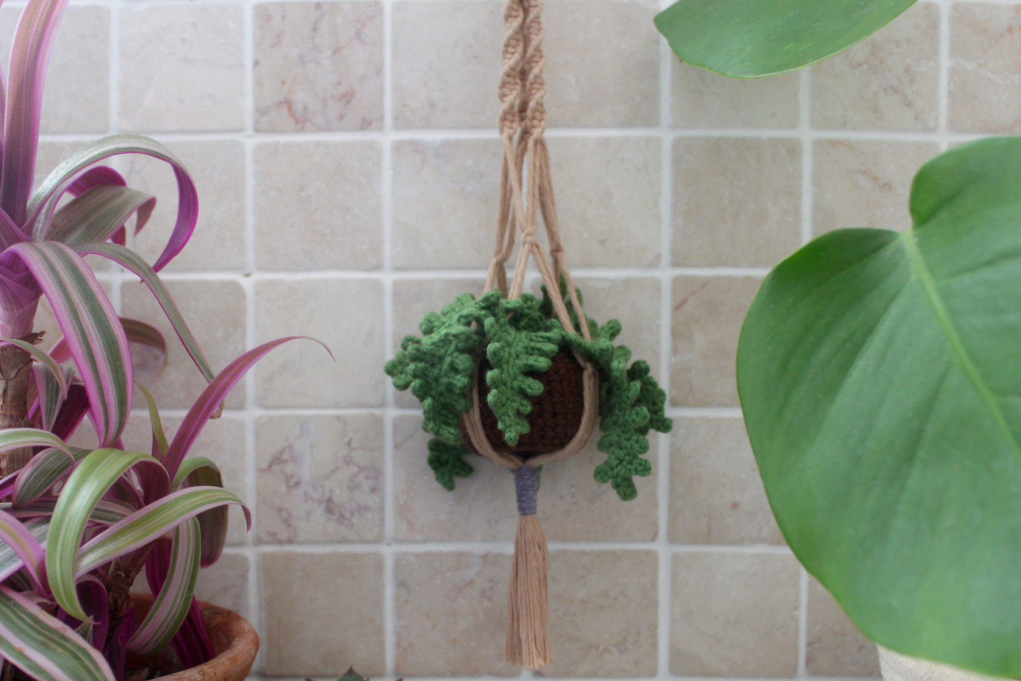 Adorable Mini Crochet Fern in a Macrame Holder